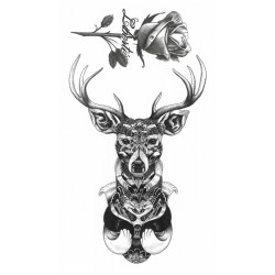 Deer & Rose