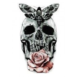 Butterfly Skull and Rose