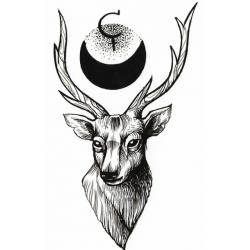 Deer Moon