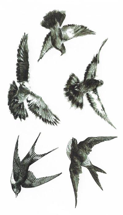 Tatouage temporaire black birds