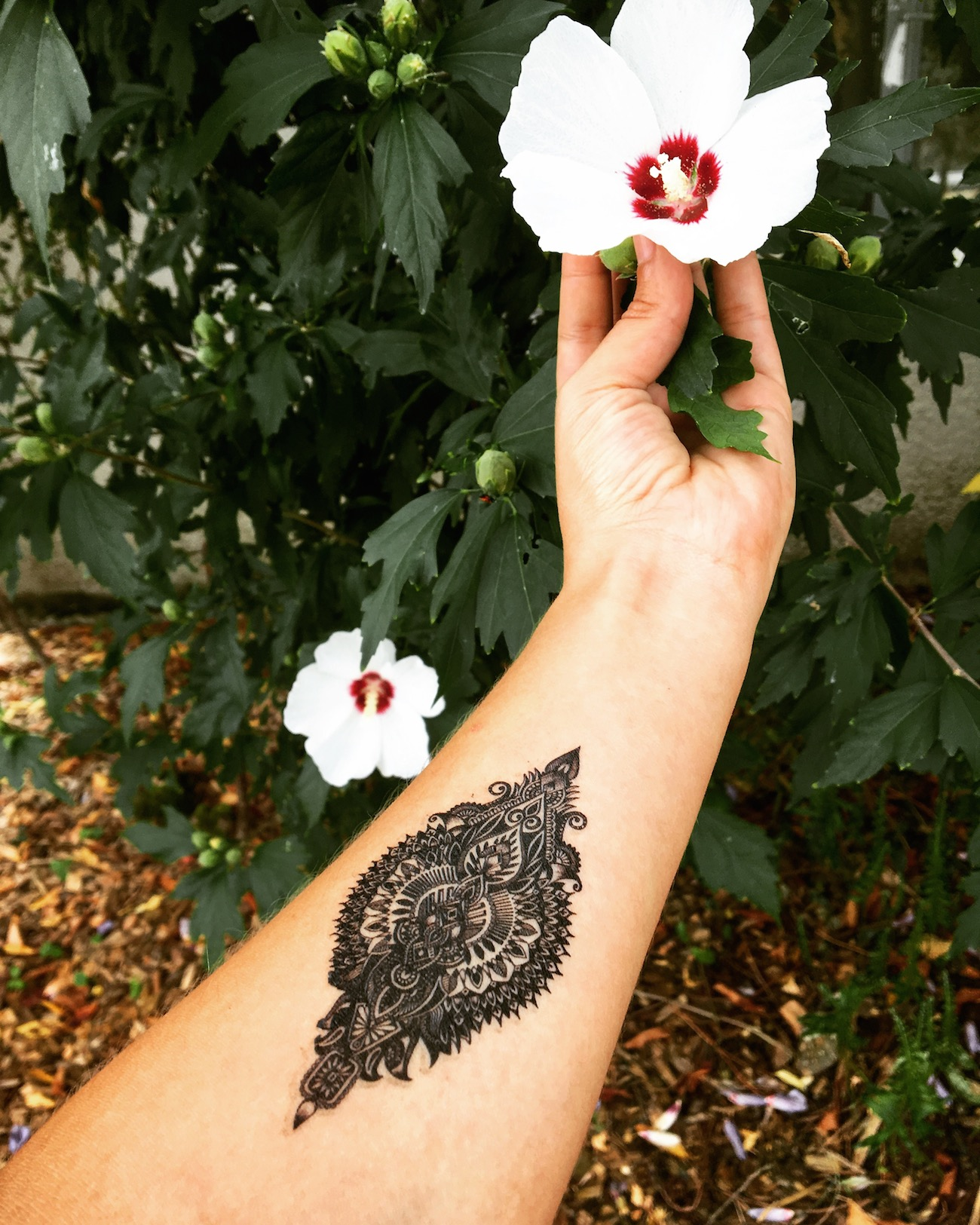 Mandala bras jardin
